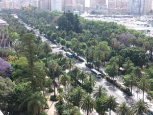 Parque-de-Málaga-1024x768